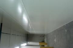 DSC_0586